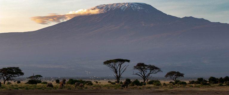 Vorbereitung auf die Besteigung des Kilimandscharo