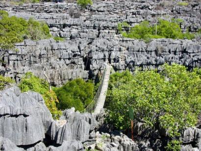 Reise in Madagaskar, Chamäleon