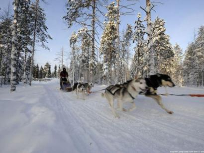 Reise in Finnland, Aktive Winterwoche in Saija