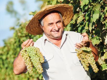 Reise in Armenien, Armenien & Georgien: Wandern & Kultur