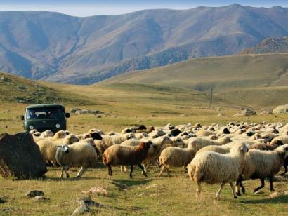 Reise in Armenien, Aufstieg zum Aragats-Nordgipfel