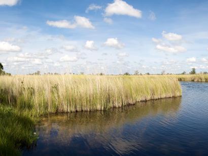 Reise in Botswana, Botswana: Höhepunkte mit Caprivi & Victoria-Fällen
