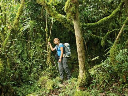 Die Ruwenzoris – In den mystischen Mondbergen Sensationelles Bergtrekking für anspruchsvolle Wander- und Naturfreunde