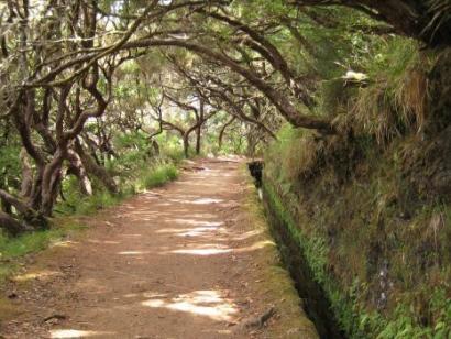 Reise in Portugal, Das Weltkulturerbe Rabacal auf Madeira