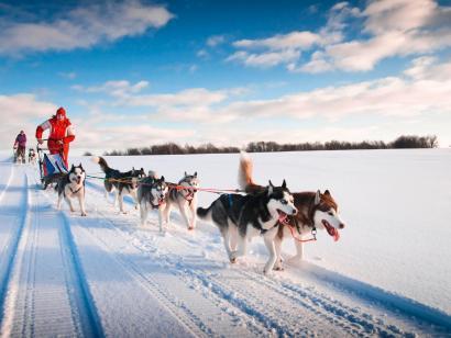 Reise in Finnland, Finnland: Husky- und Winterabenteuer