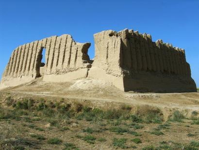 Reise in Turkmenistan, Kamele vor Oase