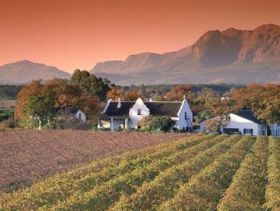 Reise in Südafrika, Weinberge um Stellenbosch