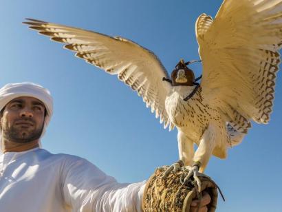 Reise in Oman, 0