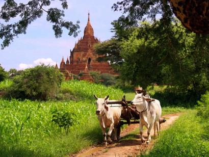 Reise in Myanmar, Highlights & Meer