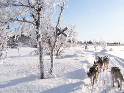 Reise in Schweden, Hüttenmiete Rucksack Stugor i Idre
