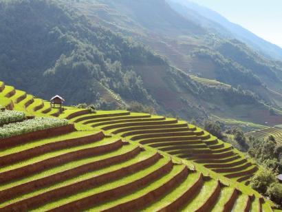 Im Herzen der Reisterrassen Große Naturrundreise in den Nordosten mit zahlreichen einfachen Wanderungen an exponierten Plätzen