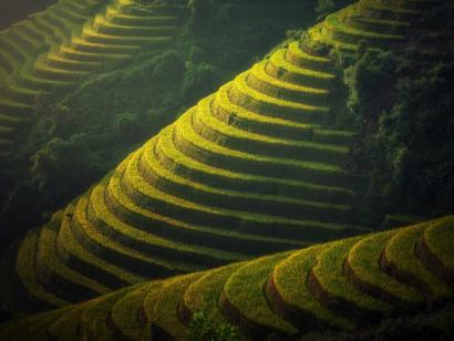 Reise in Vietnam, Reisterrassen in Nordvietnam