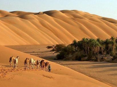 Reise in Mauretanien, Kamelkarawane im Nationalpark Banc d'Arguin
