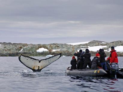 Reise in Antarktis, Argentinische Forschungsstation vor einem riesigen Gletscher