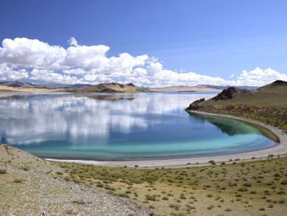 Reise in Mongolei, Kamele in der mongolischen Steppe
