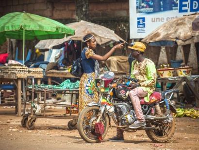 Reise in Kamerun, Flachlandgorilla