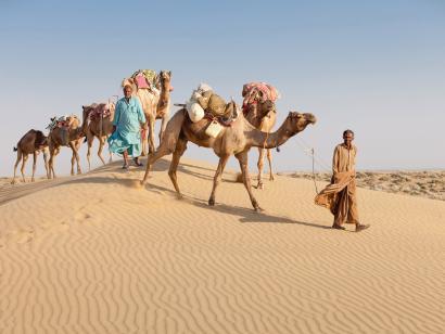 Reise in Indien, Indien: Rajasthan & Nordindien – Die ausführliche Reise