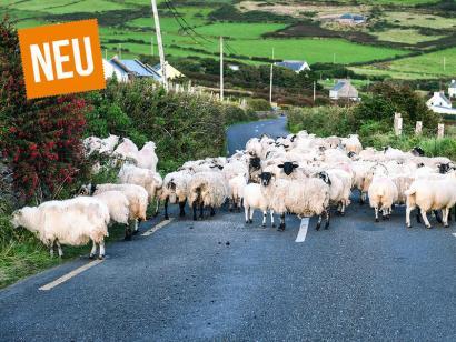 Irland - Irische Blickwinkel