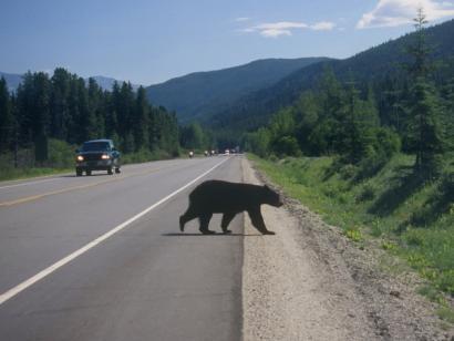 "Reise in Kanada, Kanada - On the Road – den Westen ""erfahren"""
