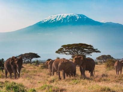 Reise in Kenia, Kenia: Höhepunkte