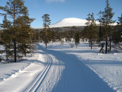 Reise in Schweden, Langlaufkurs