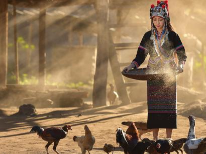 Reise in Kambodscha, Laos