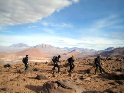 Reise in Argentinien, Vicuñas vor dem Llullaillaco