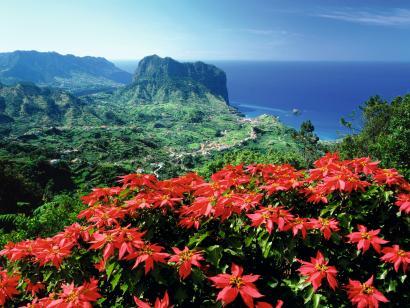 Reise in Portugal, Madeira: Impressionen