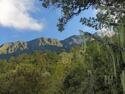 Reise in Tansania, Blick auf den Kilimanjaro vom Mount Meru