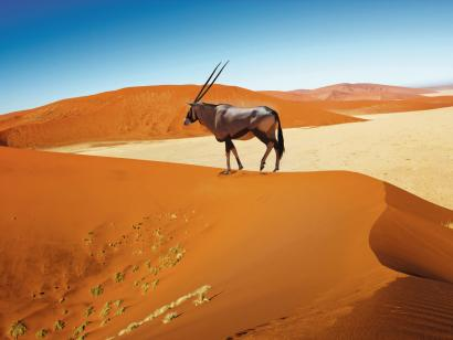 Reise in Namibia, Namibia: Mit Flair