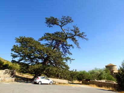 Nordzypern individuell erleben - kompakt - Mietwagenrundreise