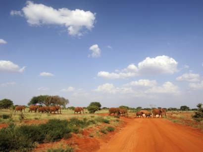 Reise in Kenia, Out of Africa und Inselparadies Komfortsafari und Strand