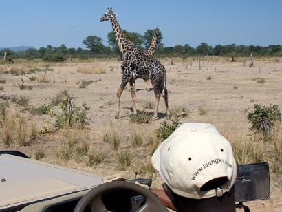 Reise in Angola, Zauberhafte Wildnis im Luangwa-Tal