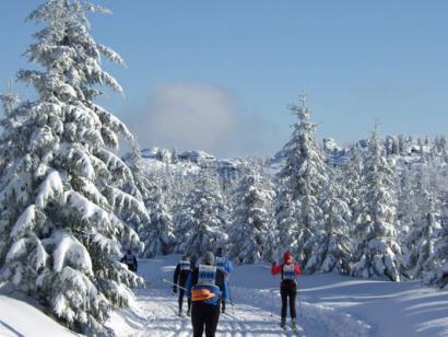 Skimarathon Jizerská padesátka - Isergebirgslauf 2019