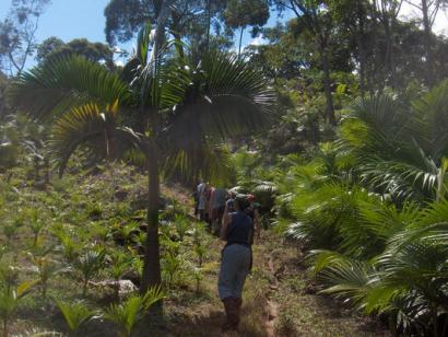 Reise in Brasilien, Südbrasilien multiaktiv