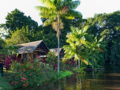 Reise in Suriname, Suriname - Die Schmetterlingsfrau