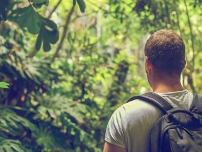 Suriname - Expedition ins Herz des Primär-Waldes