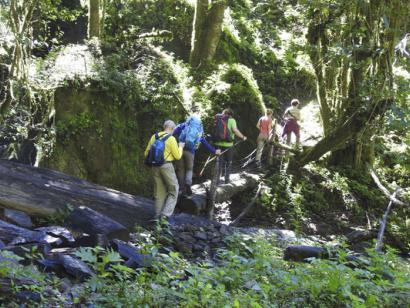 Reise in Costa Rica, Trekking, Regenwälder und Vulkane