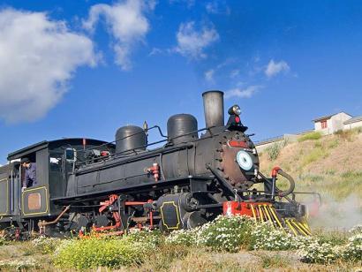Reise in Argentinien, Historische Dampflok der La Trochita