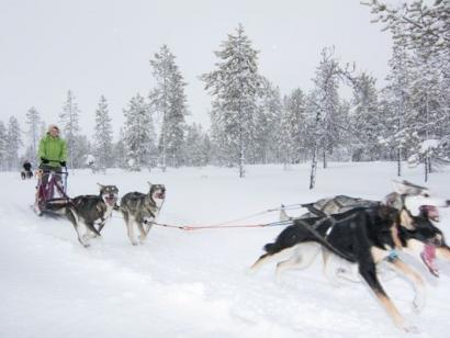 Reise in Norwegen, Wintererlebnis Lappland und Lofoten