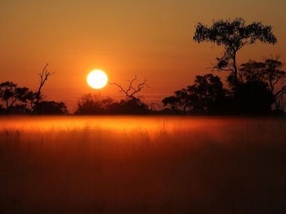Reise in Namibia, Elefanten im Sonnenuntergang