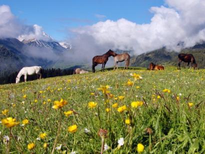 Reise in Georgien, Blick ins Tal