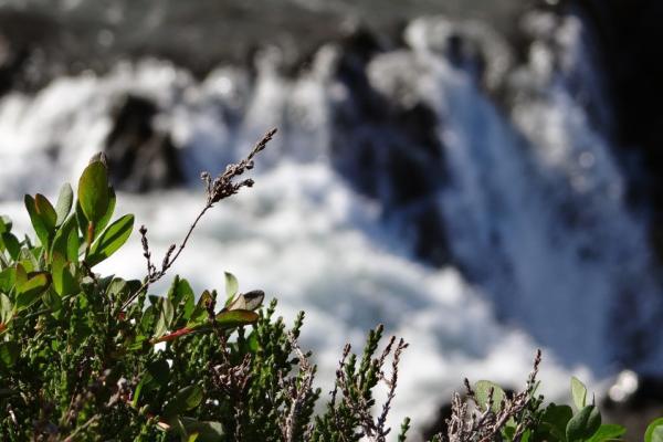 Lava, Höhlen, Heide – Hochlandtrekking im einsamen Nordwesten Trekkingreise
