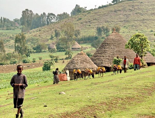 Reise in Äthiopien, Äthiopien - Expedition in den Süden
