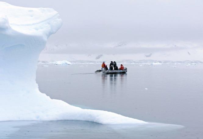 Reise in Antarktis, Zodiactour in der Paradiesbucht