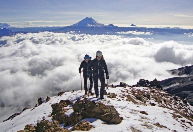 Reise in Ecuador, Vicuñas vor der alles überragenden Eiskuppel des Chimborazo