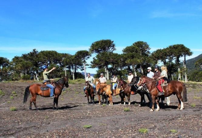 Reise in Chile, Reittour durch die Araucanía