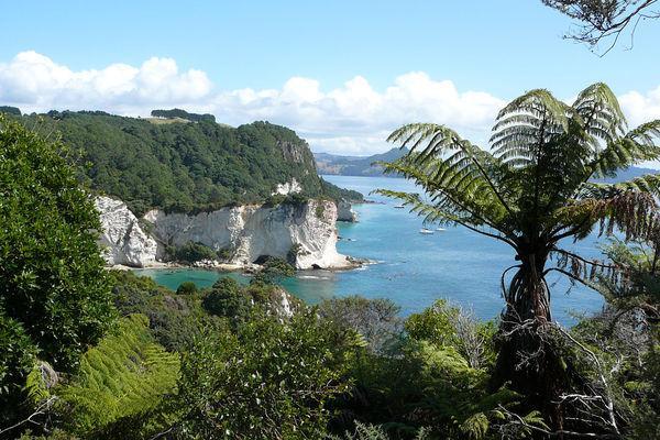 Reise in Neuseeland, Ein Fahrrad – zwei Inseln: Neuseeland per Rad