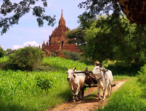 Reise in Myanmar, Highlights & Meer