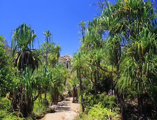 Reise in Madagaskar, Canyon im Isalo-Nationalpark